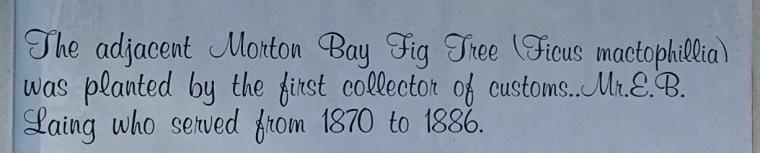 Fig tree plaque