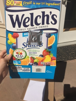 fruit snack eclipse box