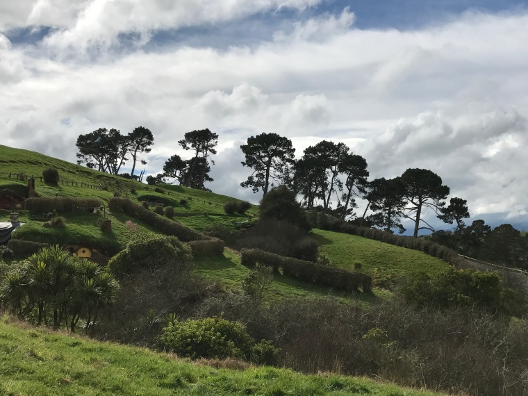 hillside with trees hobbiton