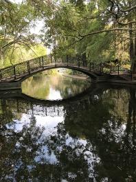 Bridge in Queen Island Japanese Garden