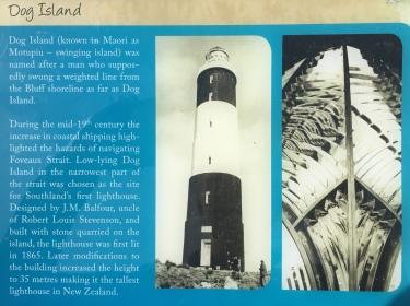 Bluff Dog Island Stewart Island